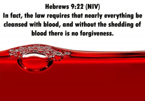 Hebrews 9:22 shedding of blood