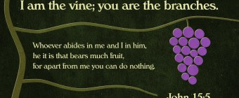 John 15 vine and branches
