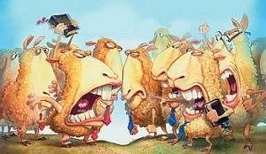squabble_sheep