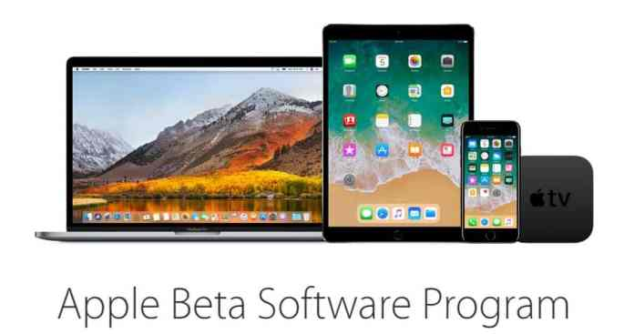 Apple Beta Program