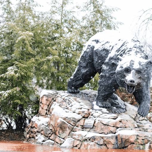 Charge sculpture of bear lightly covered in first snow of season