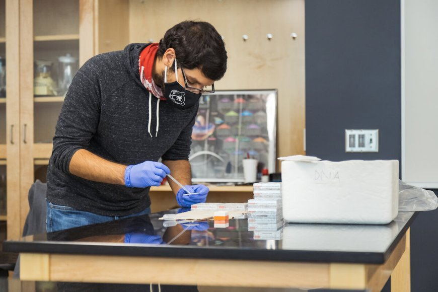 Student wearing a mask works in science lab