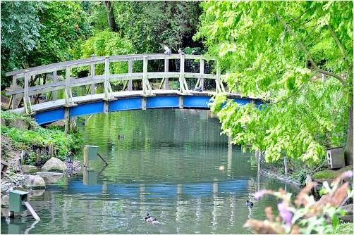 blue bridge - regent's park - the starting point
