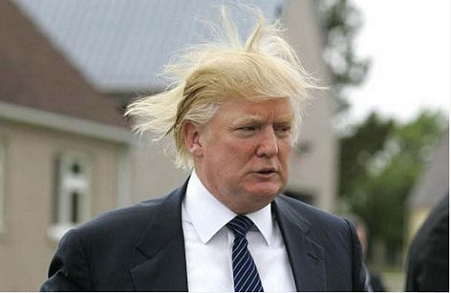 Donald Trump attacking windmills - why does he hate wind?