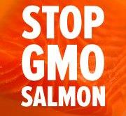 stop_gmo_salmon_180