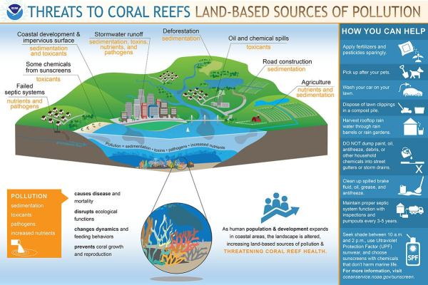 Threats to coral reefs from pollution and climate change