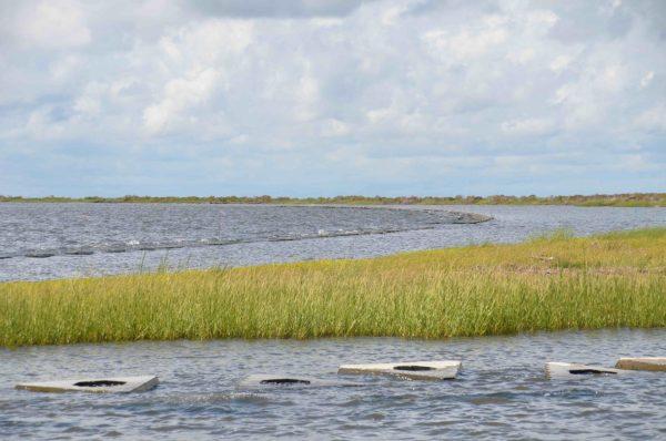 Louisiana Gulf Coast photo by Chuck Perrodin