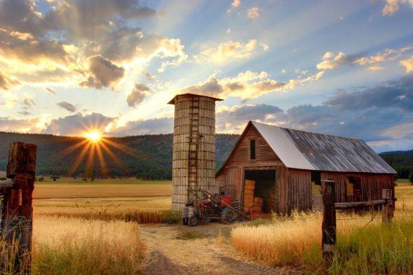 healthy farming - photo by tomothy eberly on unsplash