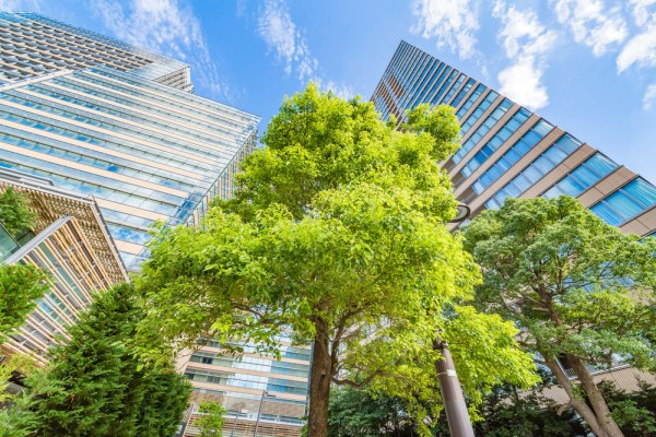 The future of green finance