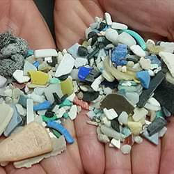 Common Misconceptions about the Ocean from NOAA - microplastics