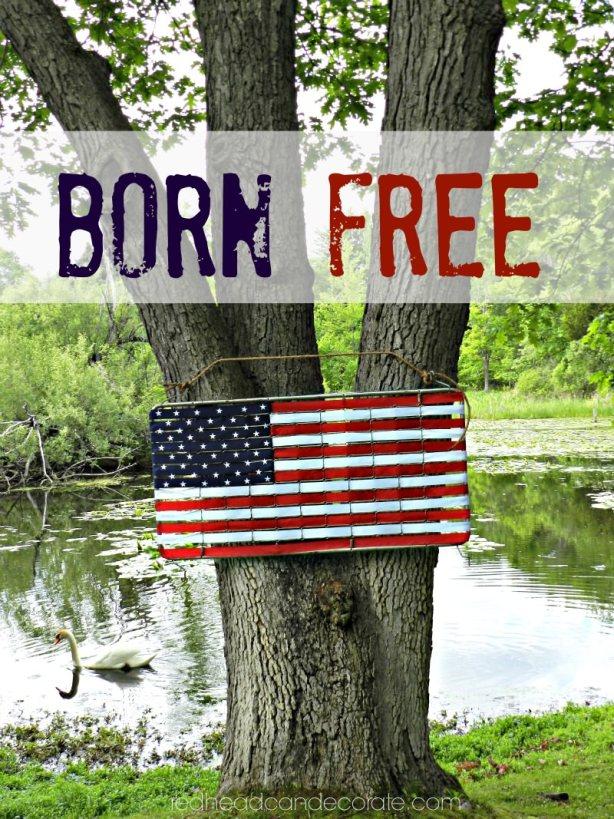 Born Free 2