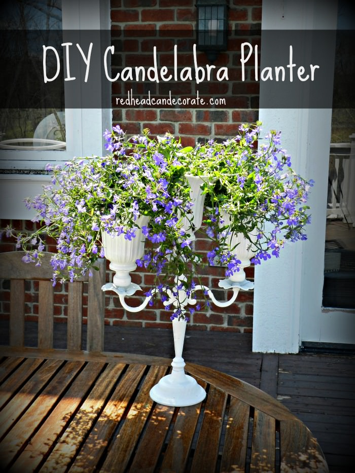 DIY Candelabra Planter