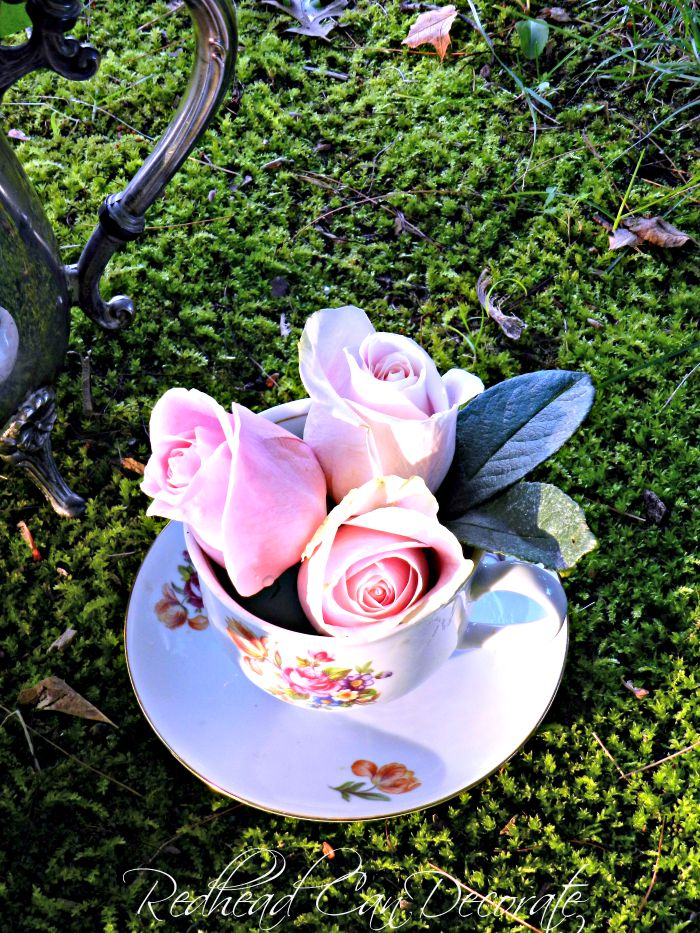 Tea Cup Rose Display
