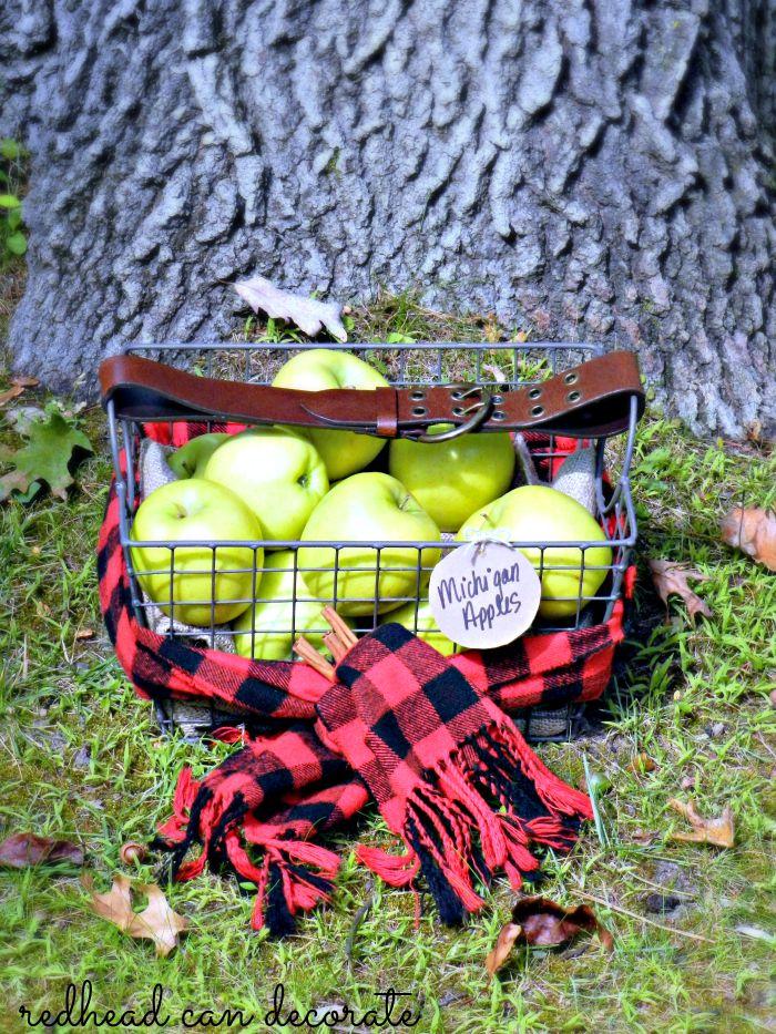 Michigan Apple Basket