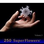 VONFLORA: 250 SuperFlowers Vol 3, Von Taylor
