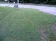 The cable lying in the yard