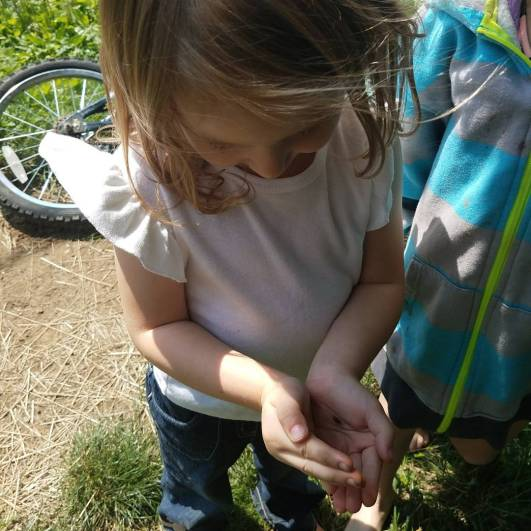 Finding bugs!