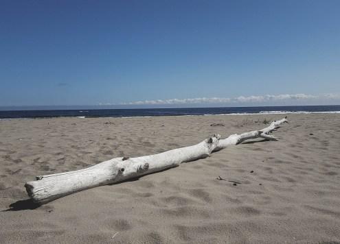 redheadventurer-liza-laboheme-beach-Kouchibouguac (8)