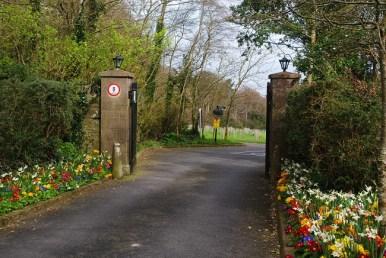 Entrance to Ardgillen