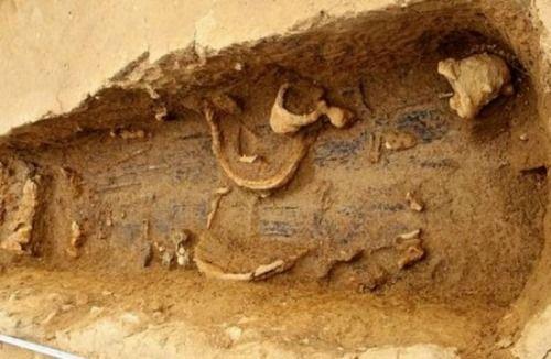 excavaciones fukuoka