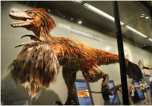 El velocirraptor, al contrarío de lo que se cree, tenía un plumaje excepcional. Crédito: Reedit.