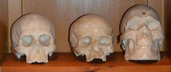 Suecia ha devuelto a la Polinesia 10 cráneos que fueron extraídos en el siglo XIX por Hjalmar Stolpe.