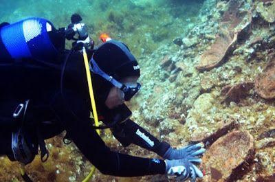 Un buceador limpiando unas vasijas a 2 metros de profundidad