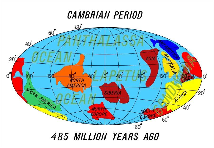 continentes periodo cambrico
