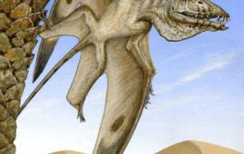 pterosaurio descubierto estados unidos