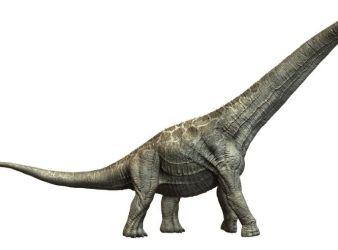 dinosaurio aegyptosaurus