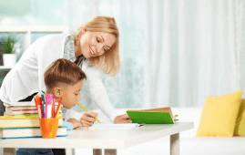 clases particulares maestro particular