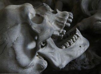 craneo reyes mayas guatemala