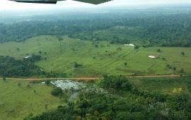 cambio climatico amazonia