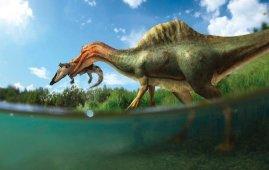espinosaurido peninsula iberica Vallibonavenatrix cani
