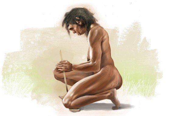 homo erectus mujer