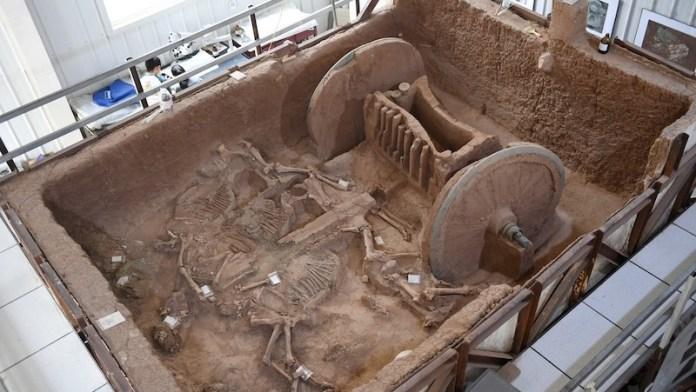 carro guerra chino 3000 años