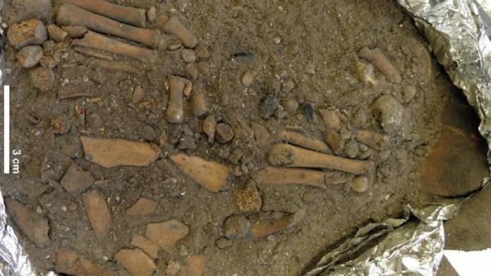 enterramiento 8000 años indonesia