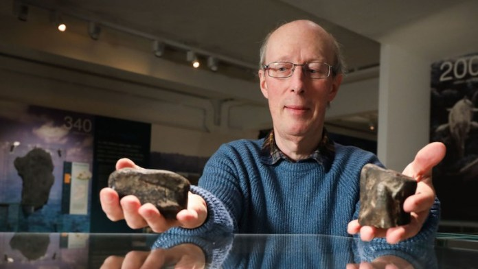 fosiles dinosaurio irlanda del norte