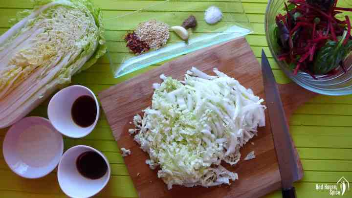 shredded Napa cabbage with spices
