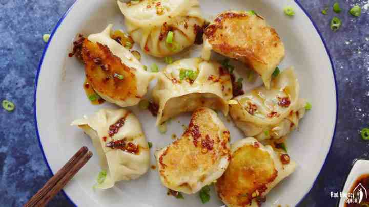 A plate of vegan dumplings