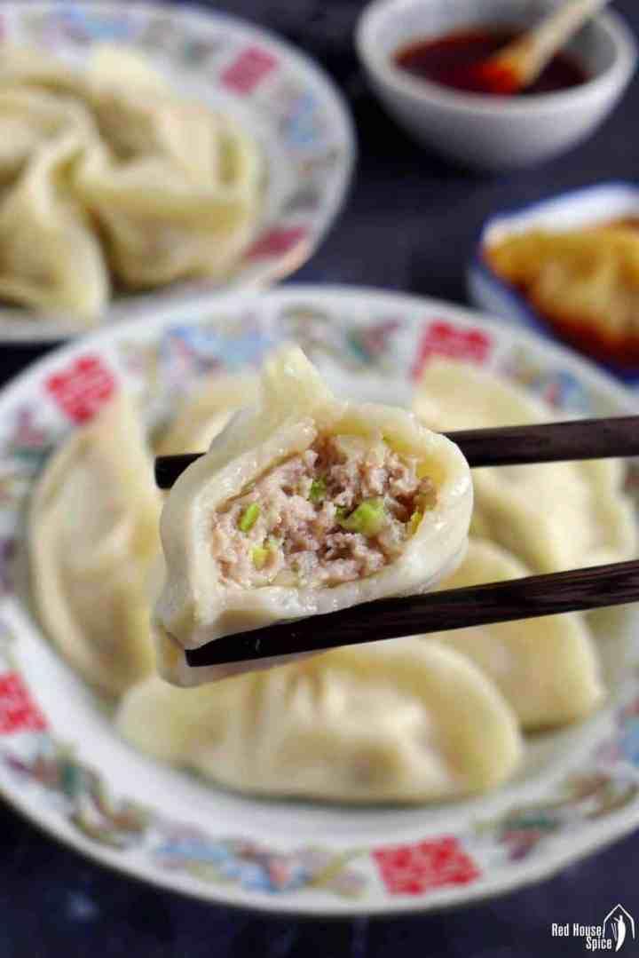An half eaten pork and cabbage dumpling