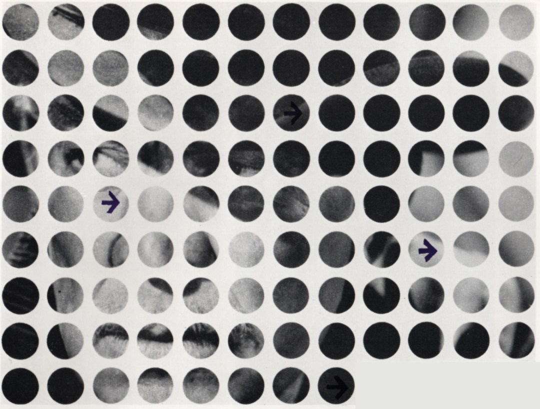 A picture made up of dots