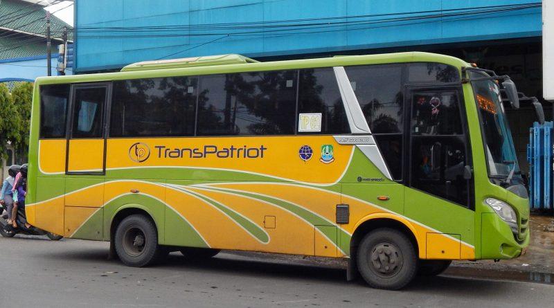 Bus Trans Patriot
