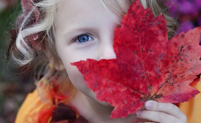 Child with leaf