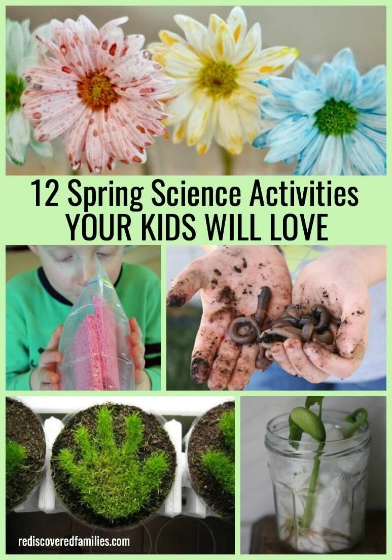 12 Spring Science Activities Your Kids Will Love