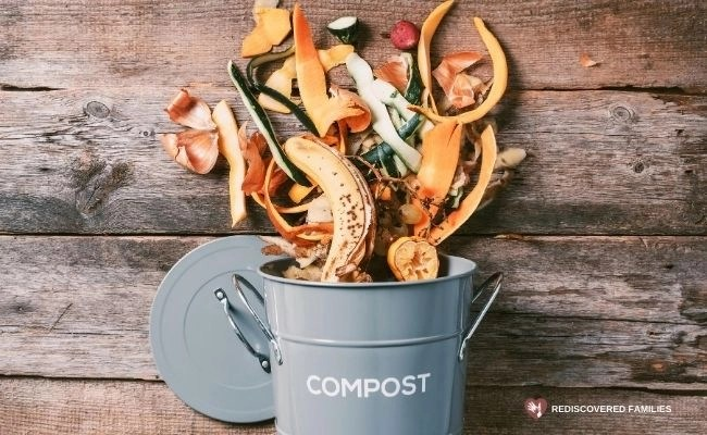 compost bin with scraps