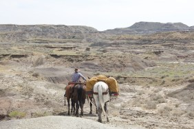 The Sand Arroyo Badlands