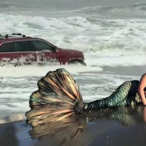 The RedJeepDorian - Mermaid Meme
