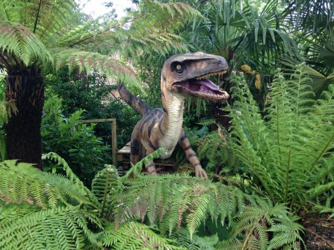 living rainforest velociraptor-w1000-h1000
