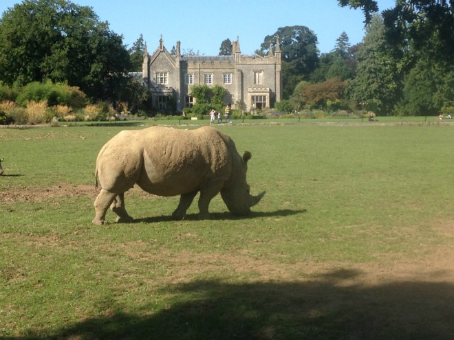Cotswold Wildlife Park, Burford, day out